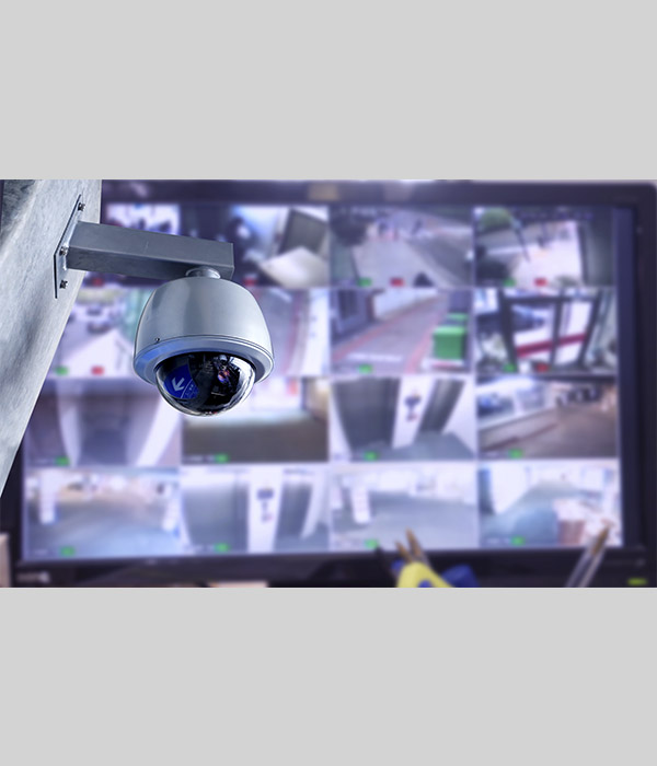 Surveillance Camera and Monitor Screen